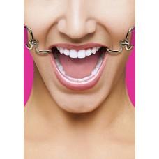 Кляп Hook Pink SH-OU106PNK